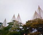 yukituri